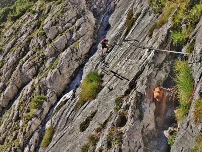 Klettergurt Für Hunde : Mctrek blog alpendurchquerung und zugspitzbesteigung mit der
